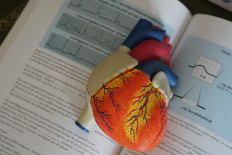 Bleibende Schädigung des Herzens bei Corona Erkrankung